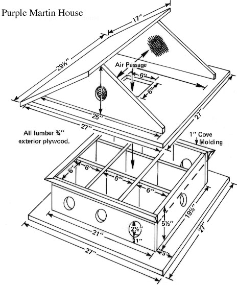 Bird House Plans - Free Bluebird House Plans, Purple Martin House