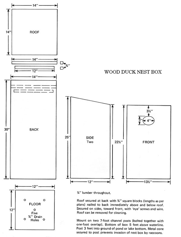 Wood Duck Birdhouse Plans House Plans Home Designs